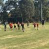 3/4 AFL 9's Gala Day